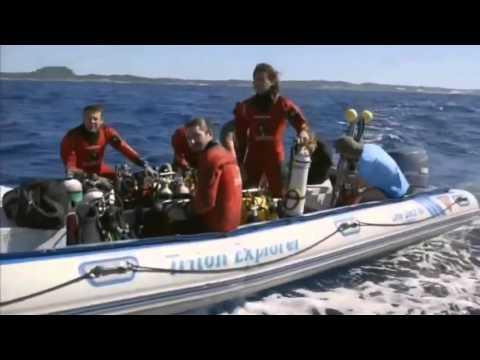 Deep Sea Creatures : Beyond The Ocean | Discovery Documentary