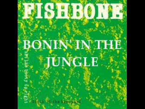 Fishbone - Bonin' in the Jungle