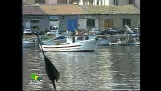 Ruoppolo Teleacras - Colpi di pistola al porto