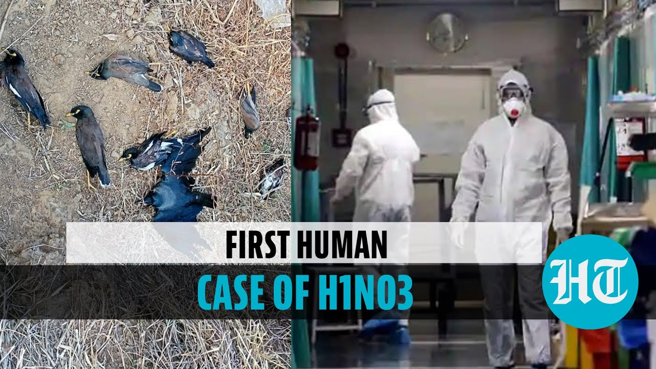 China Reports First Case Of H10N3 Bird Flu Infecting A Human