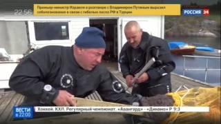 Фантастические твари моряка Федорцова шокировали Twitter