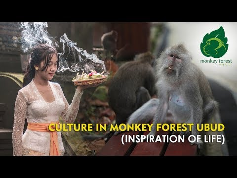 culture-in-monkey-forest-ubud-(inspiration-of-life)