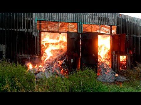 В Армении сгорело 80 голов скота!