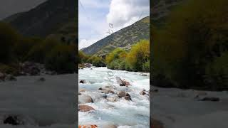 Vertical video. Mountain river Chon-Ak-Suu. Grigoriev Gorge. Issyk Kul Lake. Kyrgyzstan