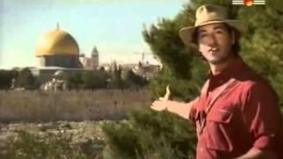 israel et le roi David