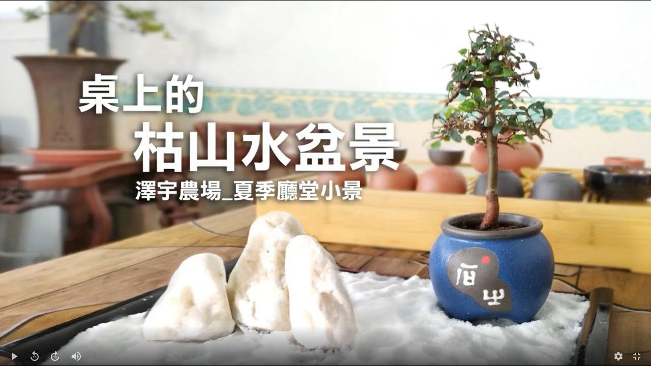 夏季換盆注意事項_枯山水盆景製作