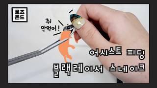 [피딩영상] 어시스트피딩 해줘야 먹는 블랙레이서스네이크…
