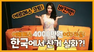 [단비언니] 에르메스 코트,버킨백 한국에서 구매실화?!…