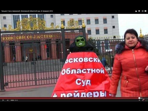 Процесс Гаянэ Амраховой, Московский областной суд, 24 февраля 2014
