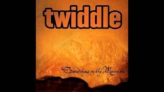 Twiddle - When it Rains, it Poors