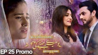 Meray Jeenay Ki Wajah - Episode 25 Promo | A Plus