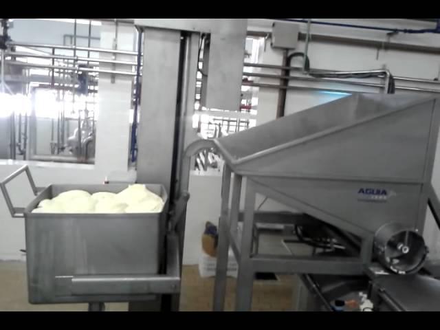 Video sugerido: Maquinaria para la elaboración del Queso Muzarella - Tec Lech Luis Ipar