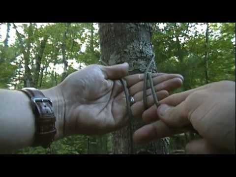 tie hammock tree trees how a for chair two ismet hanging tying to palm between treehammock