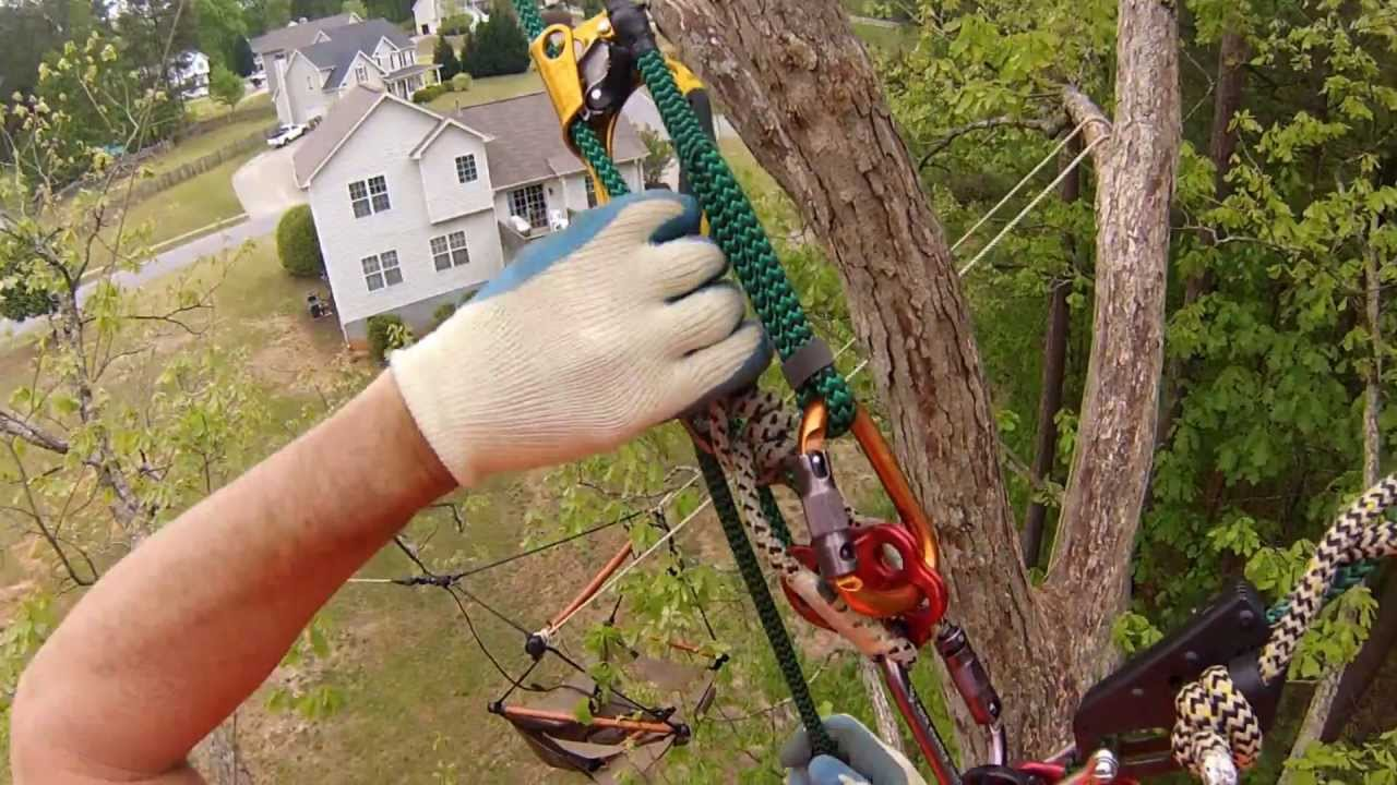 Hitch Hiker Climbing System Used With Shackles In Place Of