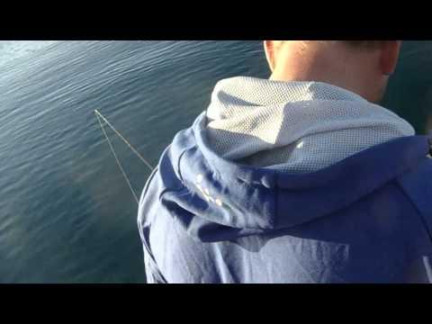 rødspettefiske i Troms