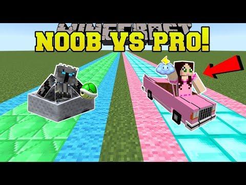 Minecraft: NOOB VS PRO!!! - FAN MADE MARIO KART RACE - Mini-Game