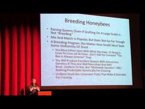 Dean Stiglitz - Honeybee Genetics and Breeding Bees - Philadelphia, 2/9/2014
