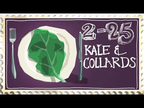 How to Cook Kale & Collard Greens - Brazilian Style