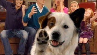 Собака точка ком (Сезон 2 Серия 4)