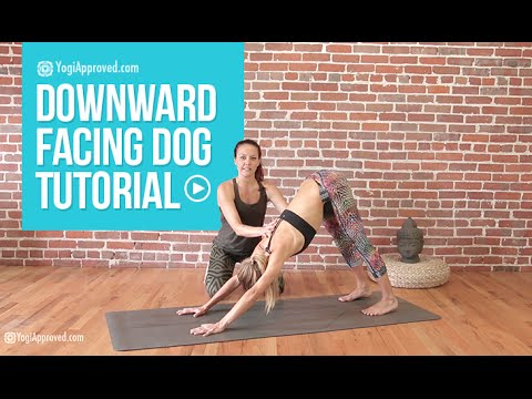 Downward Dog - Downward Facing Dog Yoga Tutorial