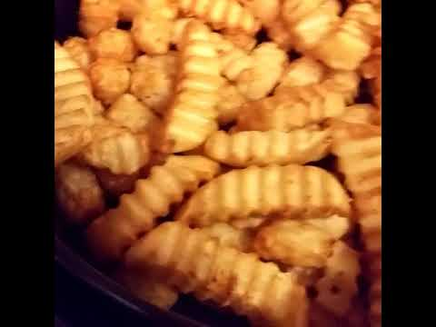 cooking-french-fries-with-the-power-airfryer.