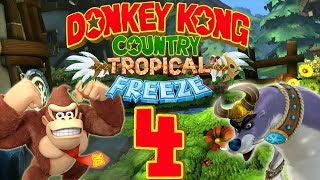 Let's Play Donkey Kong Country Tropical Freeze Part 4: Ausflug zu den Alpen