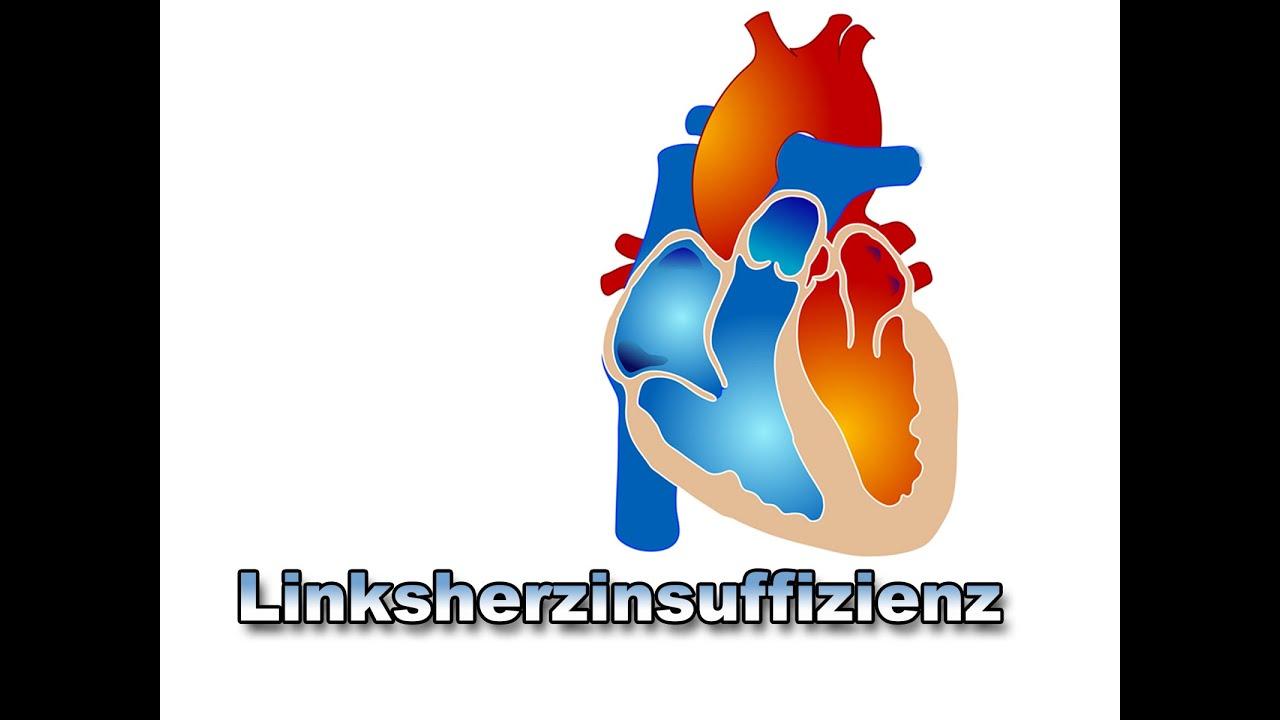 Niedlich Youtube Anatomie Des Herzens Zeitgenössisch - Anatomie ...