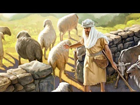 Притчи Иисуса Христа / Иисус Христос. Жизнь и учение. Фильм 5