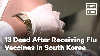 At Least 13 Dead After Getting Flu Vaccines in South Korea   NowThis
