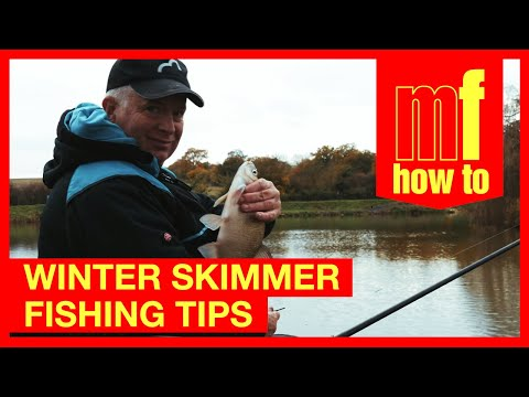 Winter Skimmer Fishing Tips