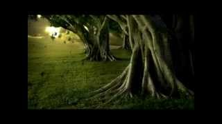 "Beautiful Peaceful Sad Piano Music ""Weeping Willow"" - (Original) Gabrielle Aapri"
