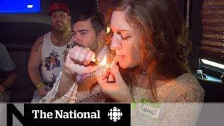 Gambar cover Future of marijuana in U.S. a hazy situation
