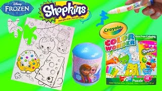 Disney Frozen Surprise Blind Bag Shopkins Crayola Color Wonder Craft Puzzle Changer Markers Toy