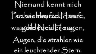 Kollegah - Das licht lyrics (on screen)