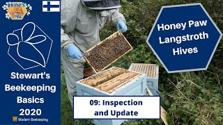 Honey Paw Hives Project: - 09: Inspection and Update - Stewart Spinks at the Norfolk Honey Co.