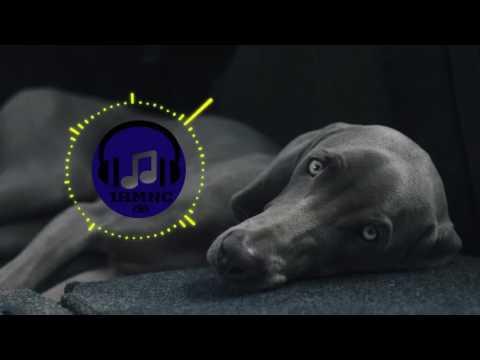 [Trap] ATB - Ecstasy (ARMNHMR & DATHAN Flip) (1 Hour Loop)