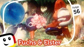 """Sandmännchen: Fuchs und Elster """"Der Spiegel"""" - Folge 56 - Unser Sandmännchen (rbb media)"""