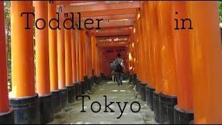 Toddler in Tokyo (Japan) 2016 // Vlog 4 Fukui Osaka Kyoto