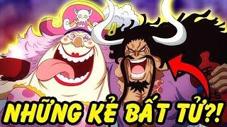 Những Kẻ Có Khả Năng Bất Tử Trong One Piece
