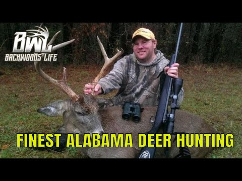 Alabama Deer Hunting - Backwoods Life 9.6