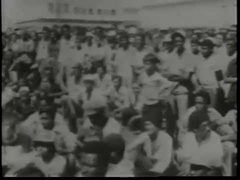 In the Sky's Wild Noise: A documentary on Dr.Walter Rodney
