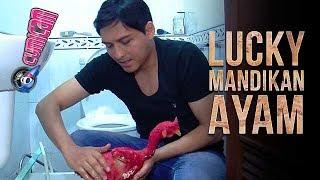 Ritual Memandikan Ayam Tanpa Bulu Ala Lucky Hakim - Cumicam 22 September 2017