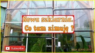 😉🌴👍189. Cz.1-Nowa szklarnia. Co tam zimuję ? ciekawerosliny.pl