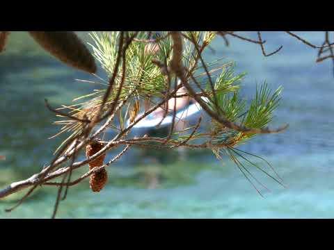 4K Footage Kefalonia Greece Panasonic Lumix TZ100 Travel Video