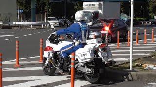 白バイ 緊急走行 取締りの瞬間 10連発!赤色灯を付けサイレンを鳴らし縦横無尽に違反車を追尾する交通機動隊!Police motorcycle of Japan