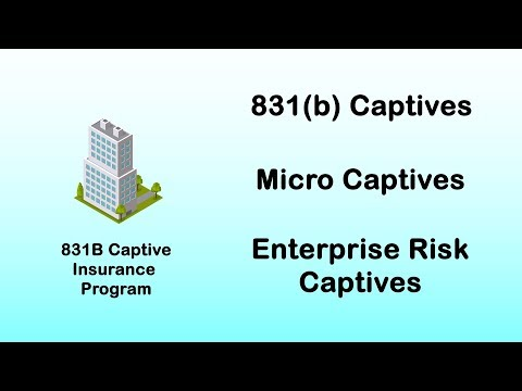831b Captives: How Business Can Insure Unusual Risks