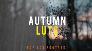 Autumn LUT Pack (FREE Download!)