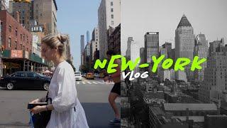 105 ЖИЗНЬ С СОБАКОЙ В НЬЮ-ЙОРКЕ