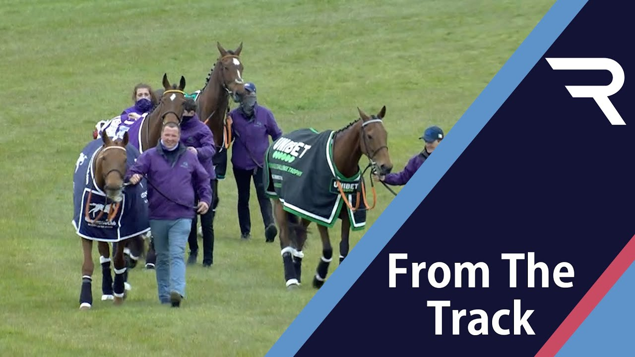 Parade of Champions at Tramore Racecourse