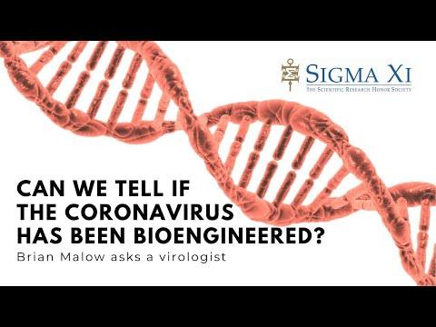 Can We Tell If the Coronavirus Was Bioengineered?